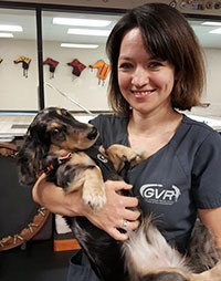 Dr. Christine Horne is certified in canine rehabilitation and acupuncture. She is holding a small dog in her arms.