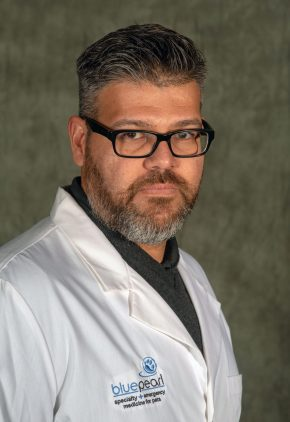 Dr. Pedro Boria is board certified in veterinary oncology.