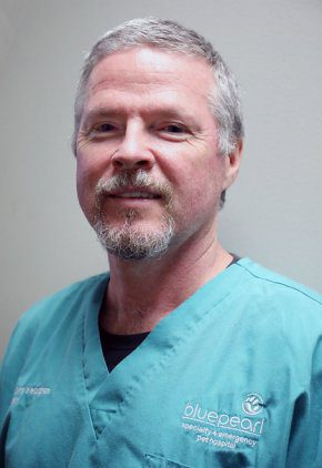 Dr. Curry Keoughan is board certified in large animal veterinary surgery.