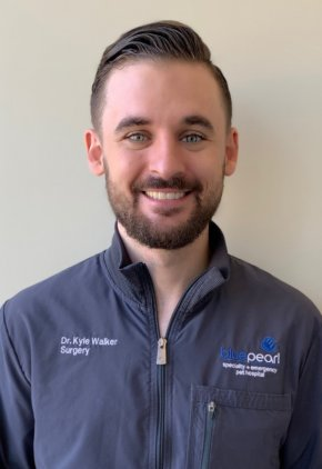 Dr. Kyle Walker is a veterinarian in our surgery service.