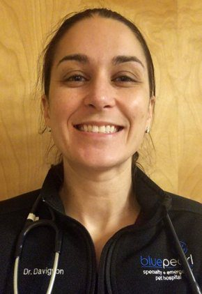 Dr. Kristen Davignon is an emergency medicine veterinarian.
