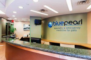 BluePearl Pet Hospital | Queens, NY | Emergency Vet