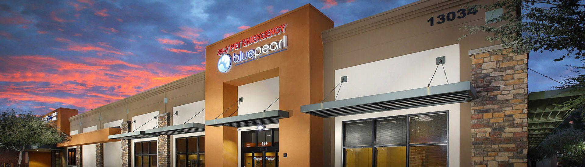 Bluepearl Pet Hospital Avondale Az 24 7 Emergency Vet