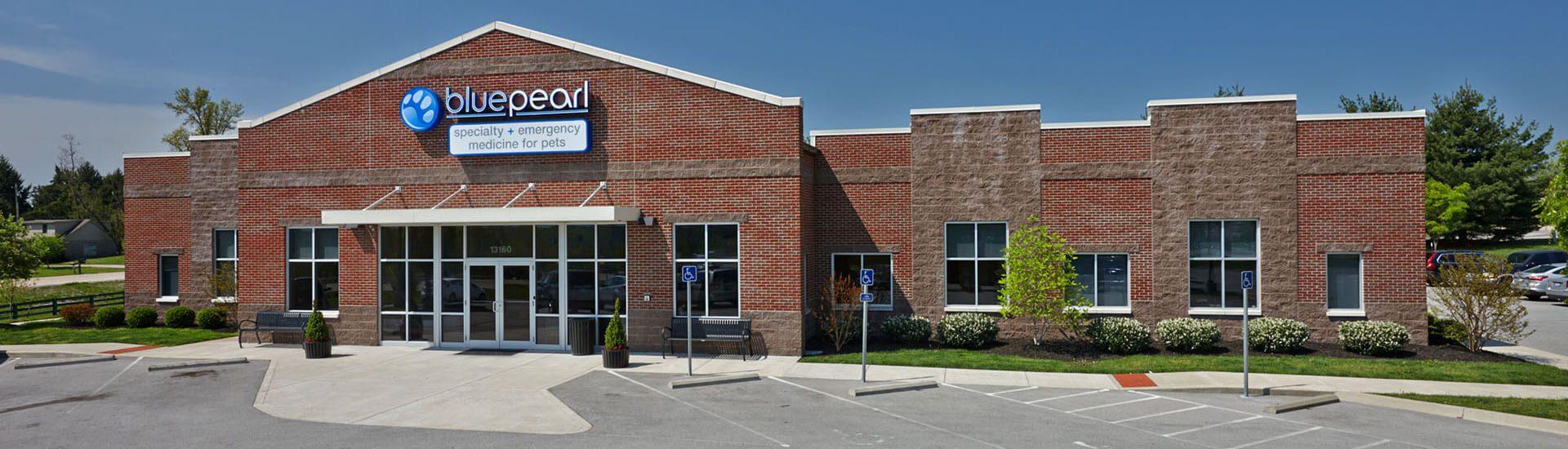 BluePearl Pet Hospital | Louisville, KY | Emergency Vet