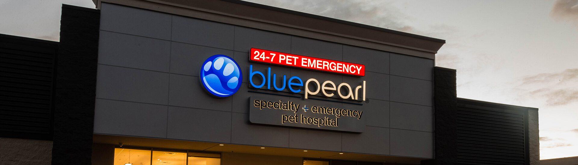 bluepearl pet hospital north seattle wa emergency vet. Black Bedroom Furniture Sets. Home Design Ideas