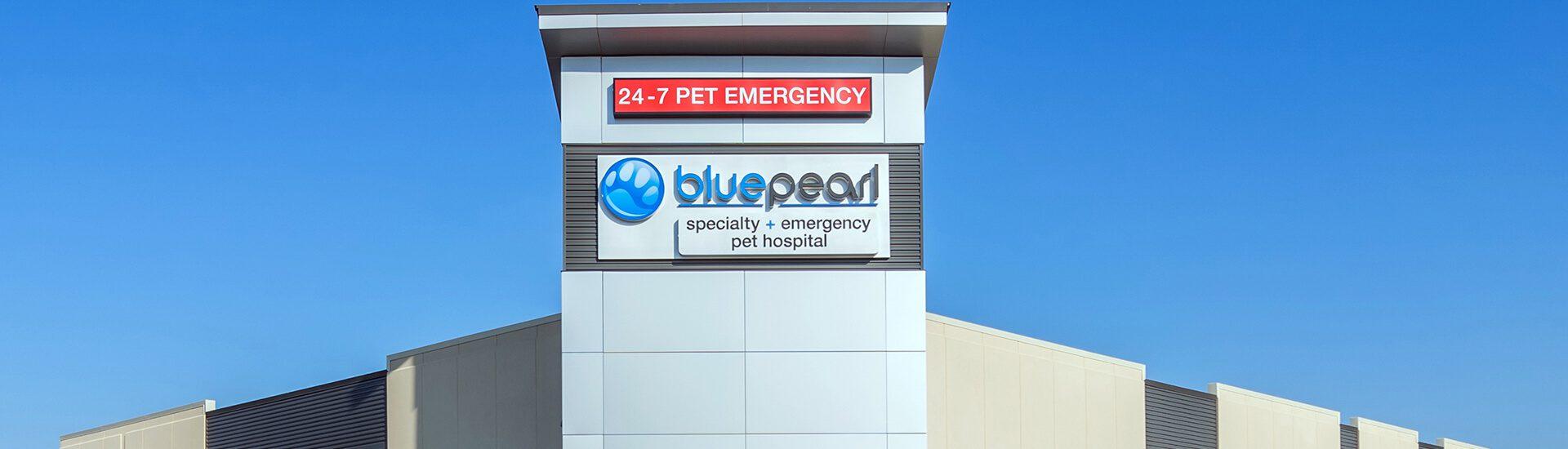 bluepearl pet hospital oklahoma city ok emergency vet. Black Bedroom Furniture Sets. Home Design Ideas