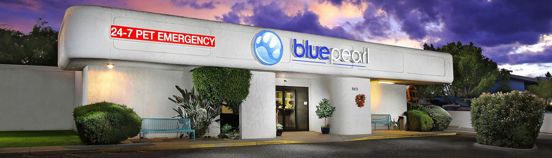 BluePearl Pet Hospital   Peoria, AZ   Emergency Vet