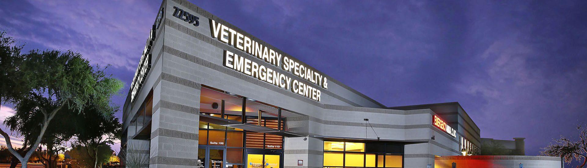 bluepearl pet hospital scottsdale az emergency vet. Black Bedroom Furniture Sets. Home Design Ideas