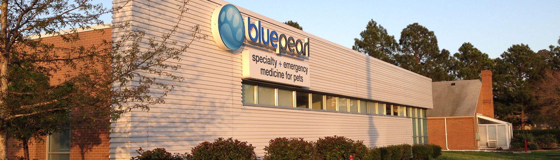 BluePearl Pet Hospital | Virginia Beach, VA | Emergency Vet