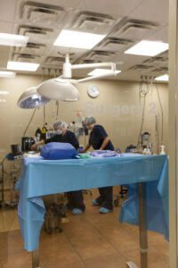 Surgeons work together in surgery suite.