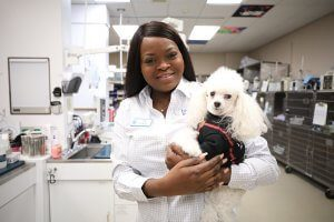 A smiling customer service agent wearing white holds a small white poodle.
