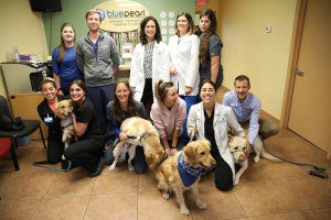 BluePearl veterinarians and dogs pose in the lobby.