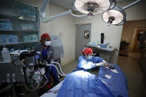 The ophthalmologist performs an eye surgery.