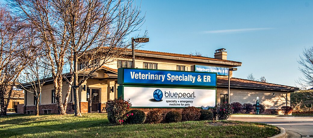 after hours vet lee s summit mo bluepearl emergency pet hospital bluepearl emergency pet hospital