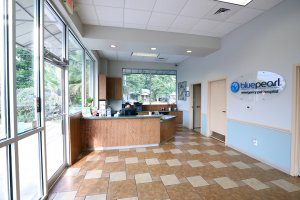 BluePearl Pet Hospital - New Braunfels lobby