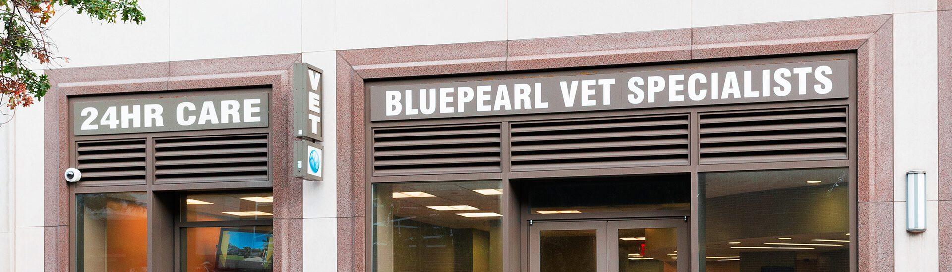 bluepearl pet hospital queens ny emergency vet. Black Bedroom Furniture Sets. Home Design Ideas