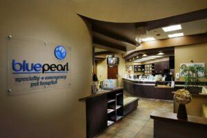 BluePearl-Scottsdale-AZ Lobby
