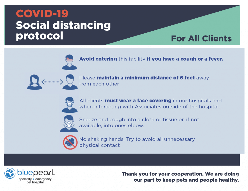 Infographic shows proper COVID protocol adherence.