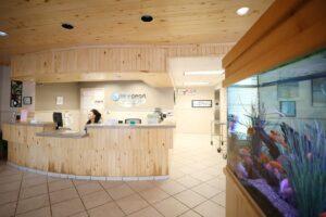 BluePearl Pet Hospital | Willowbrook, TX | Emergency Vet