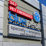 BluePearl Pet Hospital in Philadelphia, PA pet hospital exterior