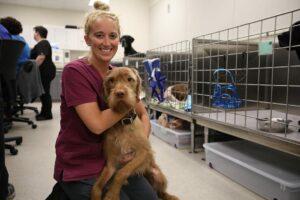 Smiling vet assistant holds a large tan dog.