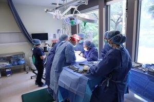 A team of veterinarians in blue gowns operate on a dog.