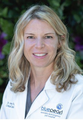 Dr. Amy Trow is board certified in veterinary emergency & critical care.