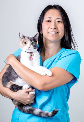 Dr. Vivian Chiang is board certified in critical care veterinary medicine.
