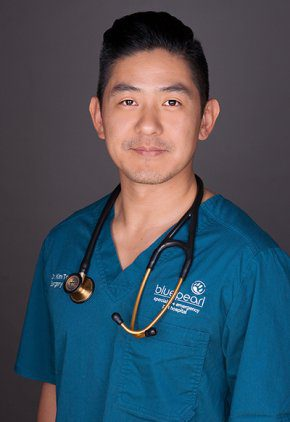 Dr. Kim Tong is board certified in small animal surgery.