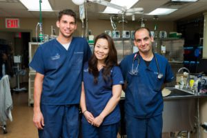 A team of three veterinarians pose for a photo.