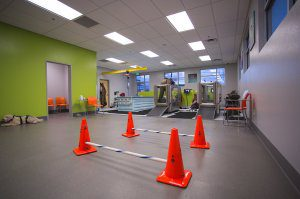 A large room with orange cones serves as a rehabilitation center.