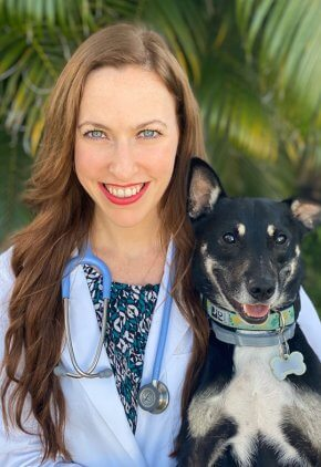 Dr. Amy Taylor is an emergency medicine veterinarian. She is holding a black and brown dog.