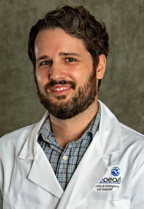Dr. Andrew Lichting is a small animal medicine and surgery intern.