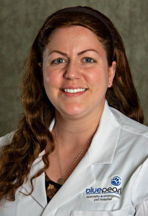 Dr. Dana Clark is a small animal medicine and surgery intern.