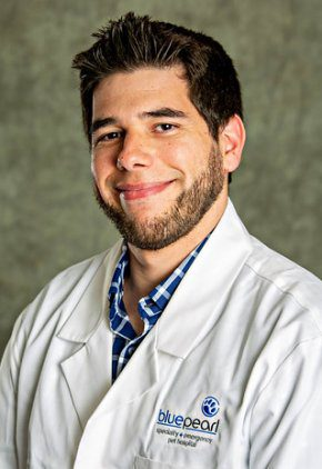 Dr. Nicholas Olson is a small animal medicine and surgery intern.