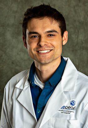 Dr. Richard Samu is a small animal medicine and surgery intern.