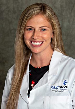 Dr. Sherrie Satmary is a small animal medicine and surgery intern.