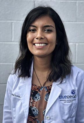 Dr. Ashika Seshadri is a small animal medicine and surgery intern.