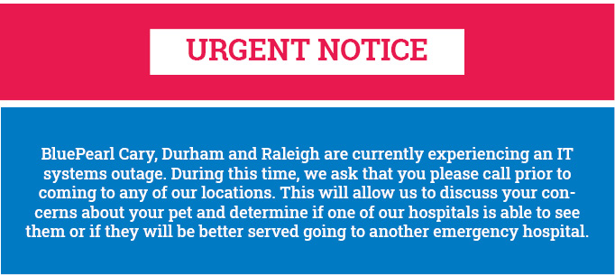 Red and blue banner explains an urgent notice about IT systems outages