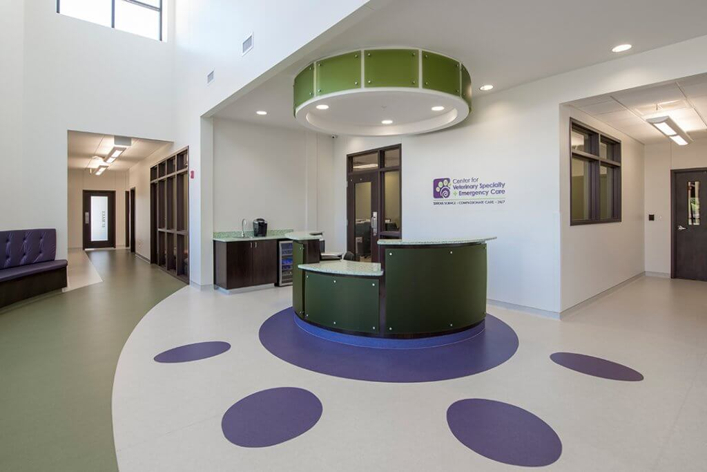 A large spacious lobby has white walls and a large purple paw design on the floor.