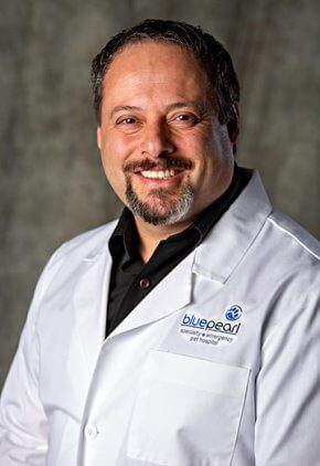Dr. Michael Grasso is an emergency medicine veterinarian,