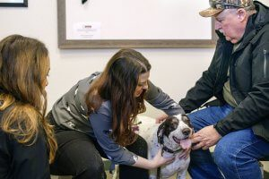 A veterinarian examines a man's dog in the waiting room.