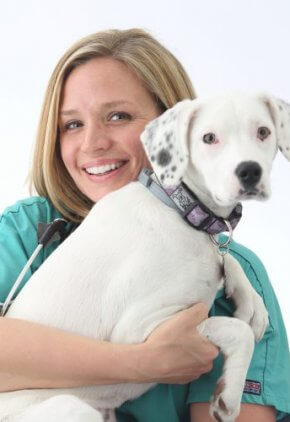 Dr. Morgan Callahan is an emergency medicine veterinarian. She is holding a small white dog.