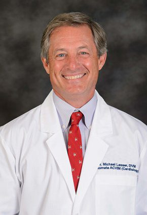 Dr. Michael Lesser is board certified in veterinary cardiology.