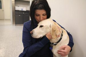 A woman holds a Labrador next to her and kisses the top of his head.