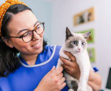 Vet tech in blue PPE holds white cat with blue eyes while smiling.