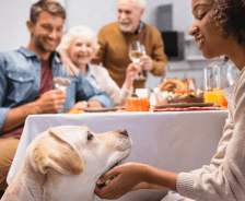 Family sitting down for Thanksgiving with dog.