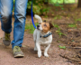 Owner walks with small dog in woods