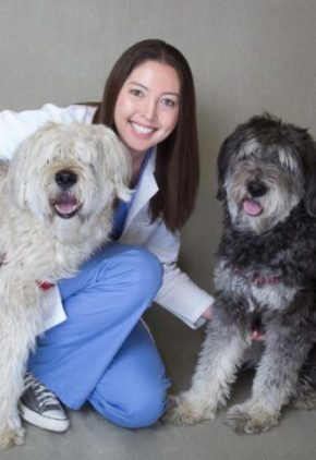 Dr. KimMi Whitehead is board certified in veterinary critical care. She is kneeling beside two large, long-haired dogs.