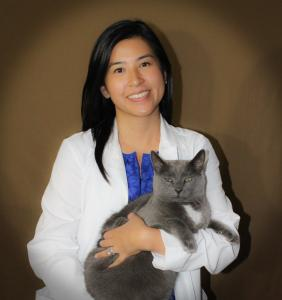 Dr. Connie Yeh is board certified in veterinary ophthalmology. She is holding a gray cat in her arms.